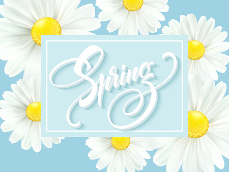 Calligraphic inscription hello spring with spring flower, blooming white daisy vector illustration.