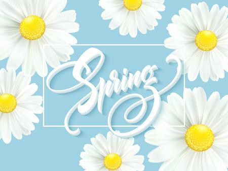 Kalligraphische Aufschrift Hallo Frühling mit Frühlingsblume - weißer weißer Gänseblümchen . Vektor-Illustration