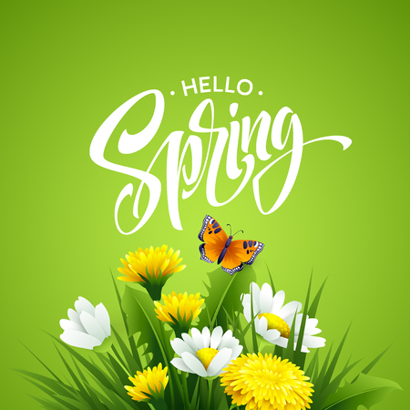 Inscription Hello Spring on background with spring flowers. Vector illustration Illustration