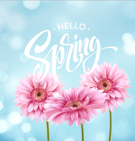 Gerbera Flower Background and Hello Spring Lettering. Vector Illustration Vettoriali