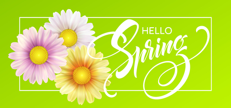 Daisy Flower Background and Hello Spring Lettering. Vector Illustration Stok Fotoğraf - 93534808