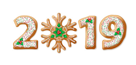 2019 gingerbread illustration. New Year cookie numbers with mistletoe berries, fudge and sprinkles. Christmas gingerbread snowflake and numbers. Banner, postcard design element. Isolated vector