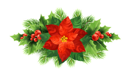 Red poinsettia flower Christmas illustration. Xmas wreath. Poinsettia flower, mistletoe, fir-tree branches decoration. Christmas ornamental plants. Postcard floral design element. Isolated vector Ilustração