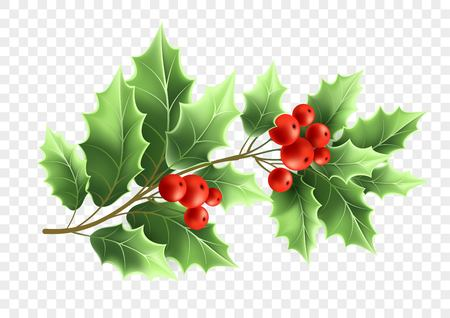 Christmas holly tree branch realistic illustration
