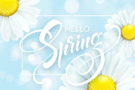 Daisy Flower Background and Hello Spring Lettering. Vector Illustration EPS10