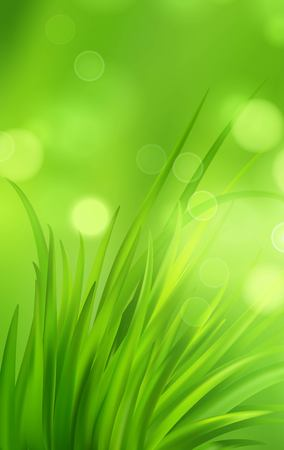 Frash Spring green grass background. Vector illustration EPS10 Illustration