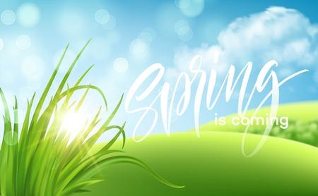 Frash Spring green grass landscape background with handwriting lettering. Vector illustration EPS10
