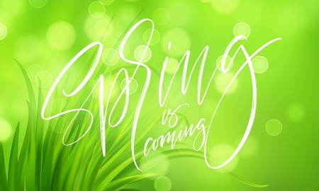 Frash Spring green grass background with handwriting lettering. Vector illustration EPS10