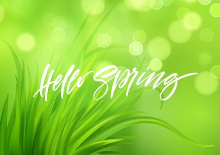Frash Spring green grass background with handwriting lettering. Vector illustration EPS10 Stockfoto - 116149013
