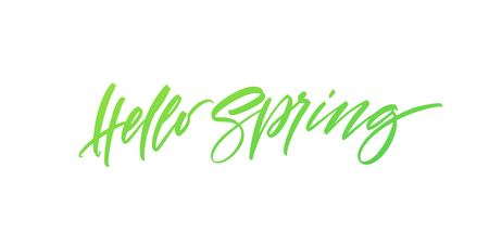 Hello Spring. Hand drawn calligraphy and brush pen lettering. Vector illustration EPS10