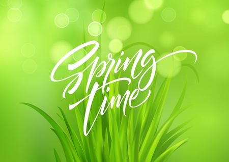 Spring time handwritten calligraphy lettering with grass background. Vector illustration EPS10