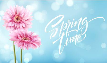 Gerbera Flower Background and Spring time Lettering. Vector Illustration