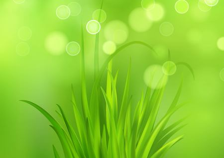 Frash Spring green grass background. Vector illustration EPS10 Çizim