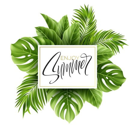 Summer poster with tropical palm leaf and handwriting lettering. Çizim
