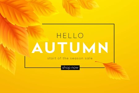 Hello Autumn sale background with realistic yellow autumn leaves. Vector illustration