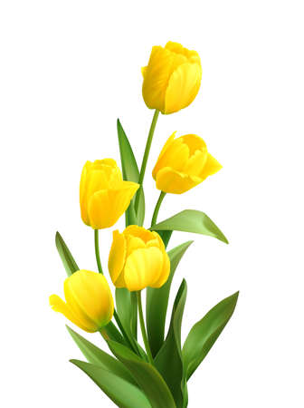 Bouquet of spring yellow tulips isolated on white background. Realistic vector illustration Stock Illustratie