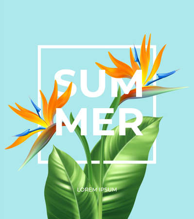 Summer tropical background with Strelitzia flowers and tropical leaves. The inscription Summer on a background of tropical green leaves. Vector illustration