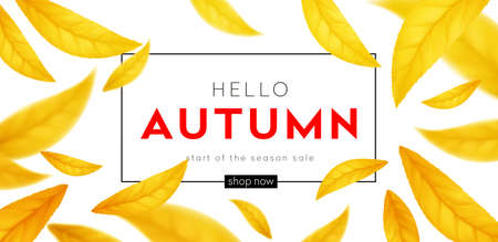 Background for the autumn season of discounts. Fall sale background with flying yellow and orange autumn leaves. Vector illustration EPS10 向量圖像