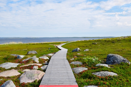Tundra vegetation and a wooden walkway on the Bolshoi Island of the Zayatsky Solovetsky Archipelago, Russia.