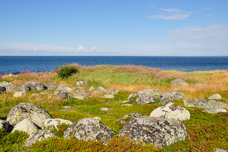 Coast of the White Sea and tundra vegetation on the Bolshoi Island Zayatsky Solovetsky Archipelago, Russia Stock Photo
