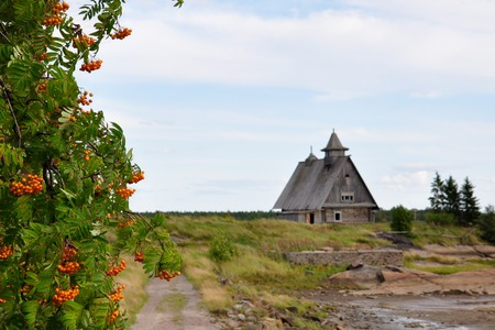 Branches of mountain ash on the background of Ruined Church at sunset, this is the place where they are filmed The Island by Russian Director Pavel Lungin, Karelia, Russia