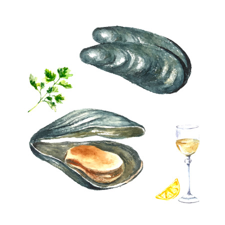 shellfish: Watercolor mussels with parsley,glass of wine and lemon.Hand draw isolated illustration on white background. Fresh organic food.
