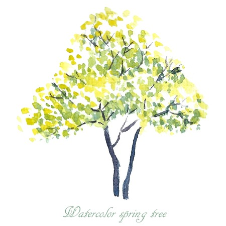 Spring tree. Spring background. Watercolor illustration.