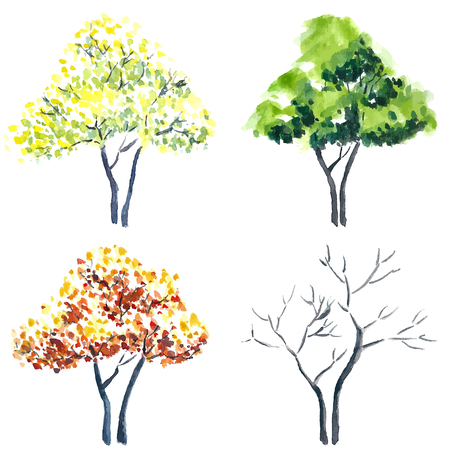 spring summer: Watercolor style vector illustration of a collection of trees:  spring, summer, autumn, winter.