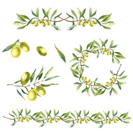 白い背景の水彩画のグリーン オリーブの枝。テキスト手描かれた分離自然ベクター オブジェクトです。健康と自然のカード デザイン