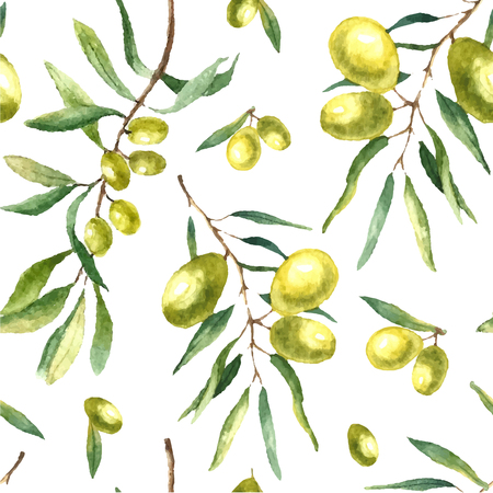 olive green: Watercolor olive branch seamless pattern. Hand drawn floral texture with natural elements: green olives, leaves, and olive branches. Vector illustration. Illustration
