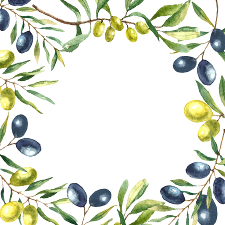 Watercolor olive branch background. Hand draw round card natural vector elements.