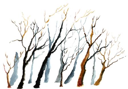 fondo blanco y negro: Fondo de la acuarela. Ramas de invierno desnudas de los árboles.