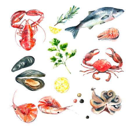 Aquarellsatz Meeresfrüchte Handabgehobener betrag lokalisierte Illustration auf weißem Hintergrund: Hummer, Krabbe, Garnele, Krake, Miesmuschel, Lachs mit Kräutern, Zitrone und Pfeffern Frisches biologisches Lebensmittel.
