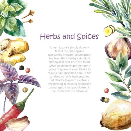 Aquarel kruiden en specerijen frame. Met de hand geschilderd voedsel voorwerpen: munt, basilicum, rozemarijn, peterselie, oregano, tijm, laurier, groene ui, gember, peper, vanille.