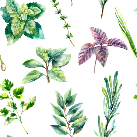 the bay: Watercolor herbs and spices pattern. Seamless texture with hand drawn elements:basil,rosemary,parsley,ginger,red pepper,anis and cinnamon sticks.
