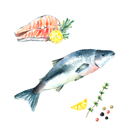 Watercolor salmon fish and steak with rosemary,thyme and lemon.Hand draw isolated illustration on white background. Fresh organic food.