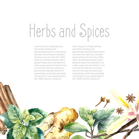 Watercolor herbs and spices frame. Hand painted food objects: mint, basil, rosemary, parsley, oregano, thyme, bay leaves, green onion, ginger, pepper, vanilla. Illustration