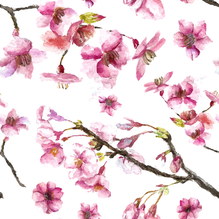 blossoms: Watercolor oriental pattern with sakura branch. Seamless oriental texture with isolated hand drawn cherry blossom. Asian natural background in vector