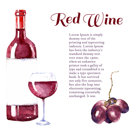 bottle wine: Watercolor wine design elements: wine glass, wine bottle, grape with place for text. Vector illustration. Stock Photo