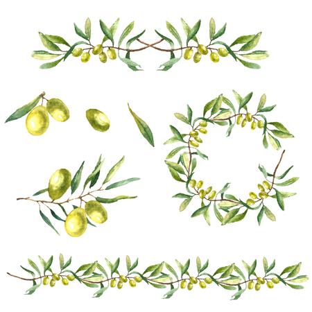 Waterverf het groene olijftak op een witte achtergrond. Hand getrokken geïsoleerd naughty vector voorwerp met plaats voor tekst. Gezonde en natuurlijke kaart ontwerp Stockfoto - 46278740