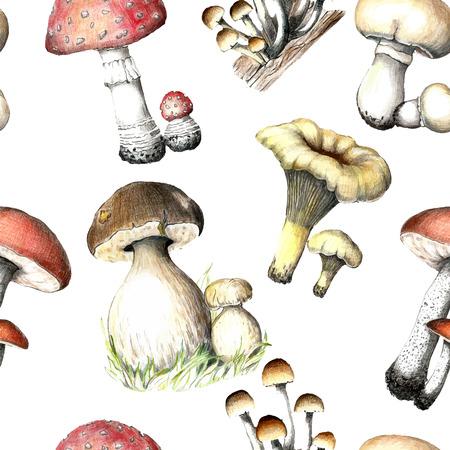 鉛筆描画のキノコのパターン。手描きの要素を持つシームレス テクスチャ: ポルチーニ、ナラタケ、ハラタケ科、テングタケ、シャンピニオンと白