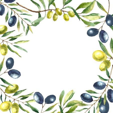 水彩のオリーブの枝の背景。描く手はラウンド カード自然ベクター要素です。