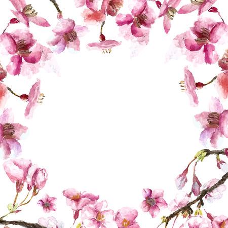 fleur cerisier: Aquarelle cadre rond fleur de cerisier. Main tirage fleur de cerisier sakura branches et fleurs. illustrations vectorielles.