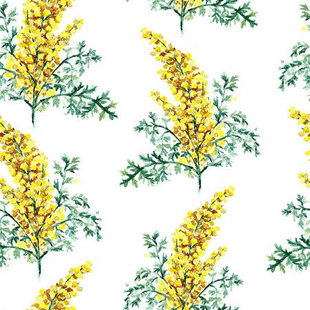 ajenjo: Dibujado a mano de acuarela ilustración botánica de la planta del ajenjo. Ajenjo dibujo aislado en el fondo blanco. Plantas medicinales ilustración, herbario. patrón transparente. vector
