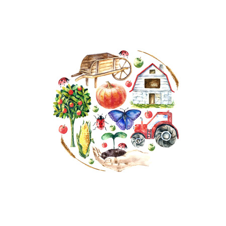 Watercolor organic farm round frame. Hand drawn objects: tractor, sunflower, truck, fence, basket, butterfly ladybug pumpkin corn and spicavector Illustration