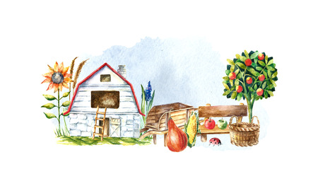 fruit basket: Watercolor organic farm. Hand drawn objects: tractor, sunflower, truck, fence, basket butterfly ladybug pumpkin corn and spicavector
