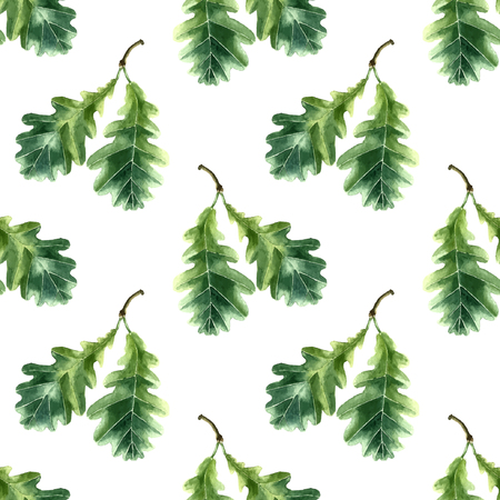 oak leaf: Oak leaf watercolor seamless pattern. Vector illustration. Illustration