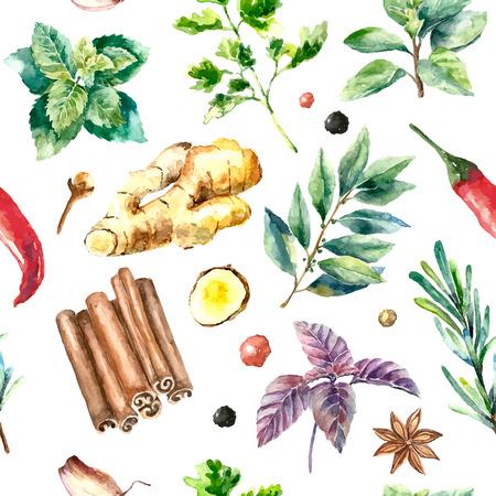 Herbes et épices Aquarelle motif. Seamless texture avec la main dessinée éléments basilic, le romarin, le persil, le gingembre, le poivre rouge, anis et bâtons de cannelle. Banque d'images - 59266661