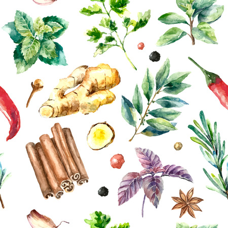 rosemary: Watercolor herbs and spices pattern. Seamless texture with hand drawn elements basil,rosemary,parsley,ginger,red pepper,anis and cinnamon sticks.