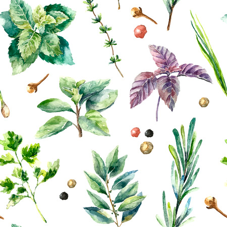 Watercolor herbs and spices pattern. Seamless texture with hand drawn elements basil,rosemary,parsley,ginger,red pepper,anis and cinnamon sticks. Banco de Imagens - 59266662